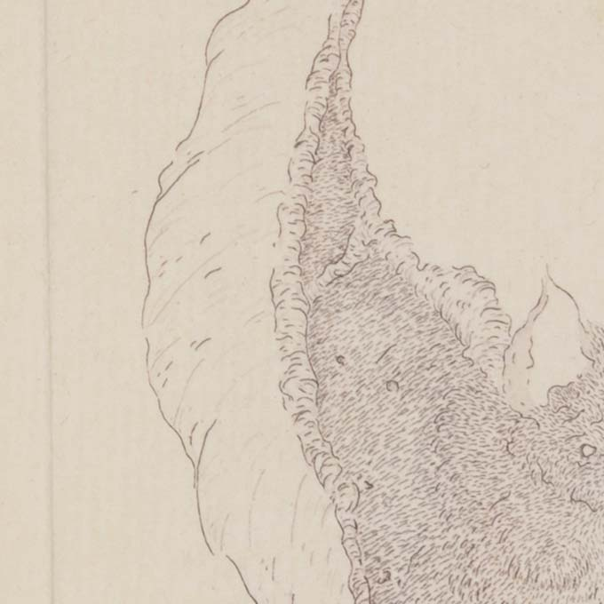 papier pur velin taille-douce eau-forte gravure etching