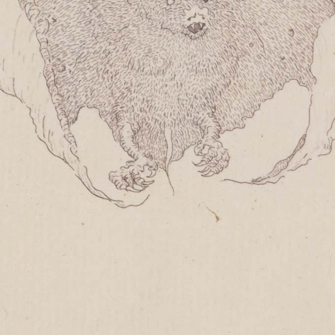 estampe-art-rare-eau-forte-tank-atelier-detail02