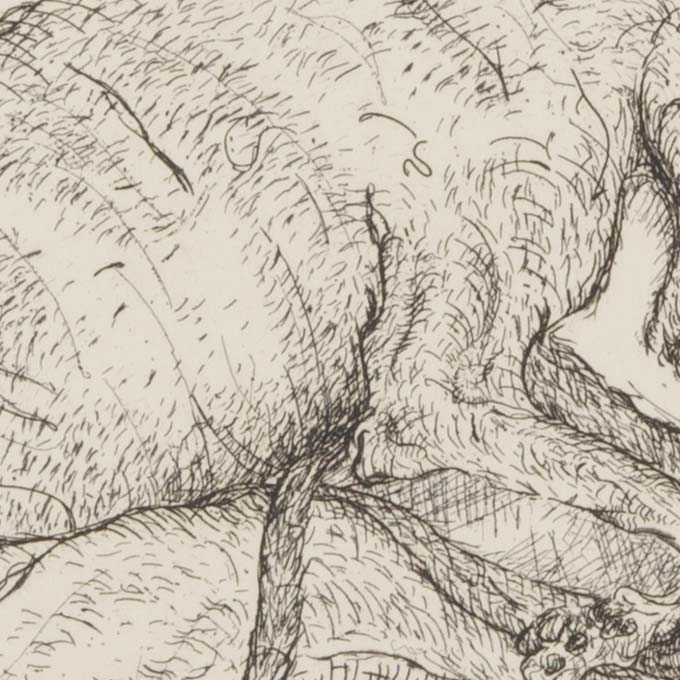 estampe-gravure-pointe-seche-tank-atelier-detail01