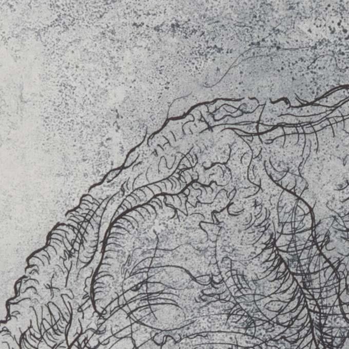 gravure-eau-forte-aquatinte-estampe-tank-atelier-detail01