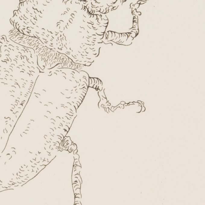 gravure-etat-estampe-art-tank-atelier-detail02