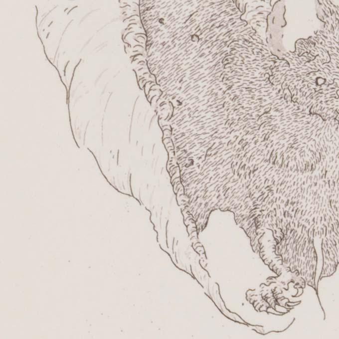gravure-taille-douce-precis-tank-atelier-detail02