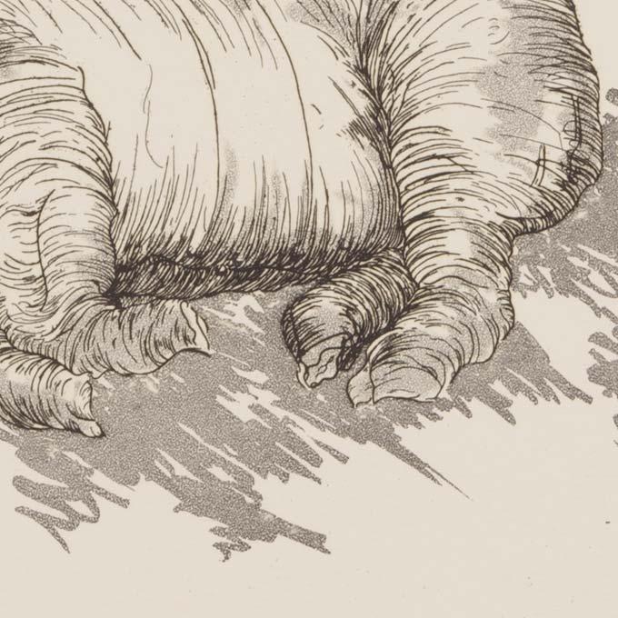 taille-douce-gravure-saint-prex-auqtinte-tank-atelier-detail02