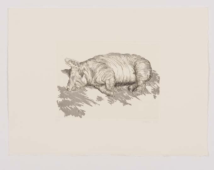 aquatinte animaux gravure saint-prex